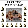 Which Witch Did the Switch ? mystery party download for girls